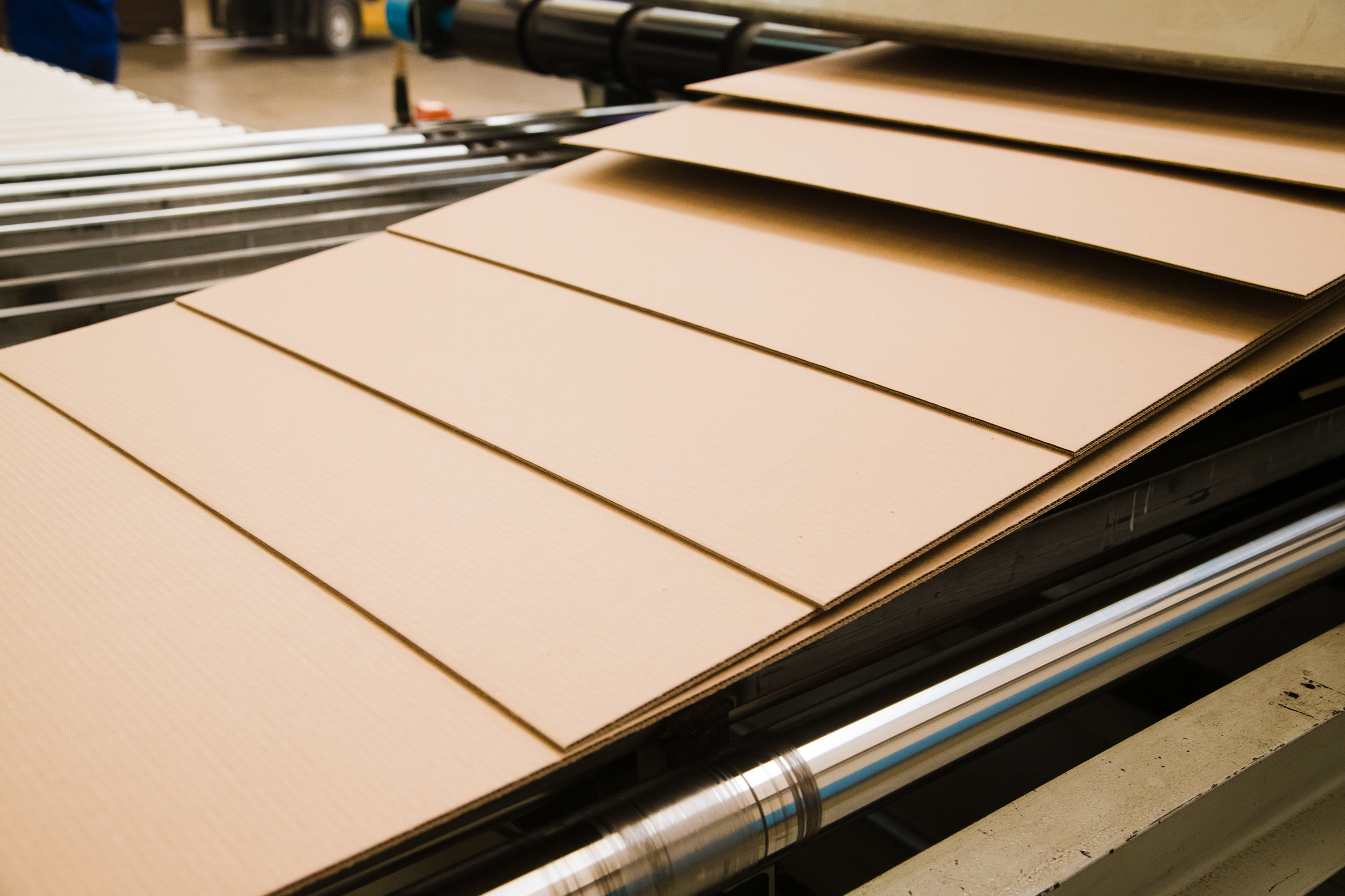 Sheets of corrugated cardboard on a conveyor