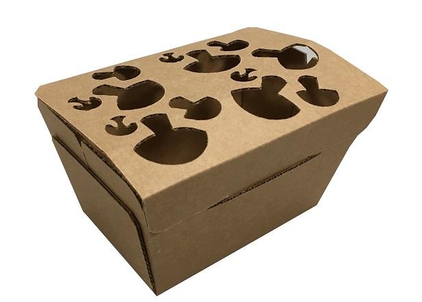 champignon box